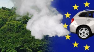 eu-biodiesel-vs-regenwald